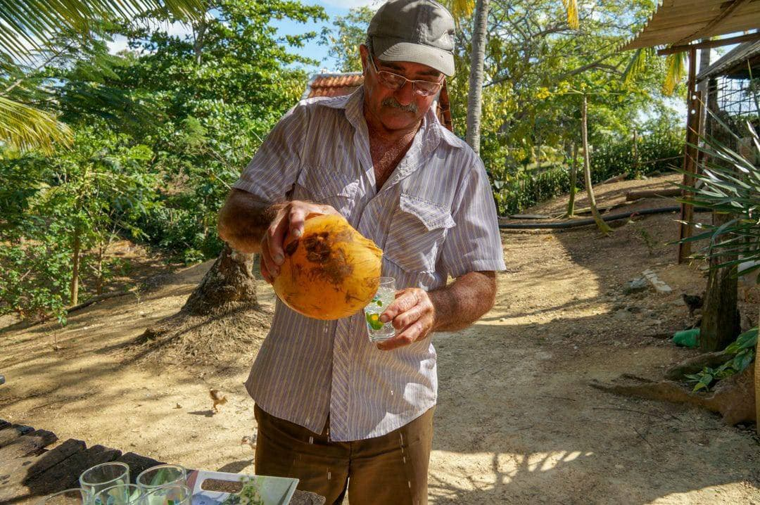 Farmer pours coconut water Holguin Excursion A Day in the Life of a Cuban Farmers House